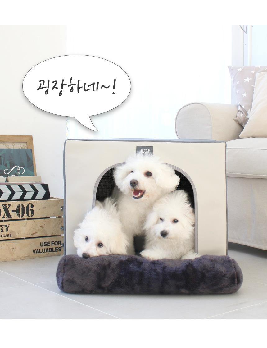 초코펫하우스 보온보냉 단열하우스 강아지집 겨울용 - 초코펫하우스, 74,200원, 하우스/식기/실내용품, 하우스